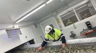 Oferta de empleo de operario nocturno en Calcín Ibérico